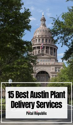 Plants are fundamentally awesome. Not only do they help to purify the air, but they also look amazing in any setting, and invoke a serene sense of peaceful tranquility as they reconnect us with the natural world. Here you'll find 15 of our favorite Austin plant stores, garden centers, and plant delivery services serving the city today. There are options for every kind of tropical houseplant imaginable in addition to succulents, cacti, flowering plants, outdoor plants, miniature trees, and Large Plants, All Plants, Flowering Plants, Planting Flowers, House Plant Delivery, Plant Companies, Umbrella Tree, Contemporary Planters, Easy Care Plants