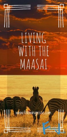 Want to know what it's like to live with the Maasai people in Kenya? Come check out my story!