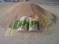 Une heure de production de pellets de pin avec le pelletiseur Oliotechnology de 11kW. Possibilité d'ensachage.