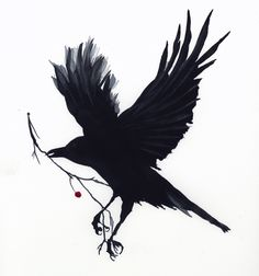 Watercolor of a raven with branch and red berry, by Jake Marshall.