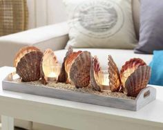 Deko-Ideen DIY decorations with shells - inspiration and fantasy Seashell Art, Seashell Crafts, Beach Crafts, Diy And Crafts, Seashell Decorations, Seashell Projects, Diy Projects, Beach House Decor, Diy Home Decor