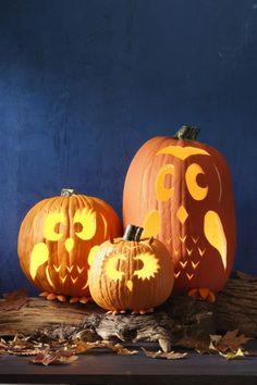 halloween k rbis schnitzvorlagen 20 thematische deko ideen herbst pinterest halloween. Black Bedroom Furniture Sets. Home Design Ideas