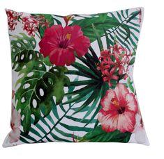 liście egzotyczne palma hibiscus