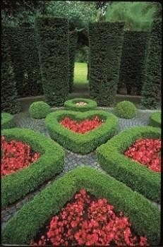 Heart Garden. Very Alice in Wonderland. Landscaping