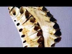 Keramik Transformation mit Jürg C. Bächtold - YouTube
