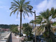Seaside Walk in Roquebrune Cap Martin