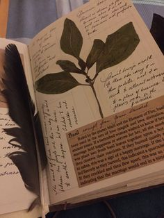 The aesthetic of my Grimoire has been inspired by the Owen's spellbook from the movie, Practical Magic. Just thought of sharing some of the things written on them that has been shared as well on my. Journal Aesthetic, Witch Aesthetic, Book Aesthetic, Bullet Journal Ideas Pages, Journal Pages, Journals, Nature Journal, Scrapbook Journal, Book Of Shadows