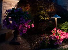 VOLT Path and Area Lights add perfect touch for gardens and flower beds Patio Lighting, Exterior Lighting, Landscape Lighting, Lamp Cover, String Lights Outdoor, House Design, House Styles, Plants, Led Strip