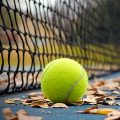 Participate in the Circle Photo Contest for a chance to win prizes and give exposure to your photography. Join over 100 photo contests per year and browse a huge selection of photos. Tennis Wallpaper, Star Wallpaper, Tennis Clubs, Tennis Players, Tennis Photography, Tennis Accessories, Photographs And Memories, Tennis World, Tennis Shirts