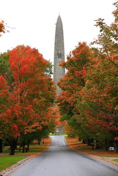 Bennington Battle Monument In Bennington, Vermont - for birds-eye views of the foliage. you don't have to climb any stairs; just take the elevator! New England Usa, New England States, Oh The Places You'll Go, Places To Visit, Bennington Vermont, To Infinity And Beyond, Vacation Spots, Vacation Memories, Travel Usa