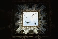 Foto inedite del National Geographic 25