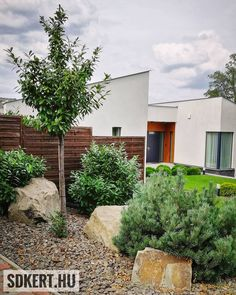 """111 kedvelés, 0 hozzászólás – SD KERT - Spiegel Ákos (@topgarden) Instagram-hozzászólása: """"#babérmeggy #rocks #andezit #topgarden #kerttervezés #kertépítés #moderngarden #letisztult…"""" Patio, Outdoor Decor, Modern, Instagram, Home Decor, Trendy Tree, Decoration Home, Room Decor, Home Interior Design"""