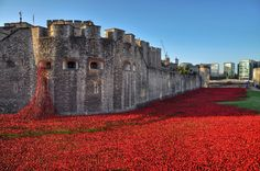 Blood Swept Lands and Seas of Red | Tower of London