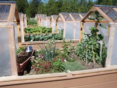 Raised Garden Beds with Greenhouse Covers that Open and Close