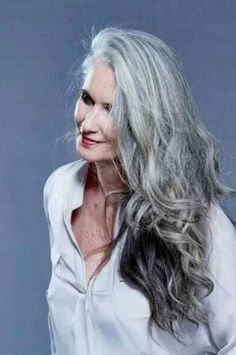 length hair styles professional hair models and silver hair on 9309