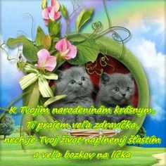 K Tvojim narodeninám krásnym, Ti prajem veľa zdravíčka, nech je Tvoj život naplnený šťastím a veľa bozkov na líčka