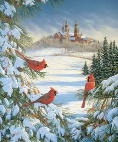 Cardinals at Holy Hill by Sam Timm