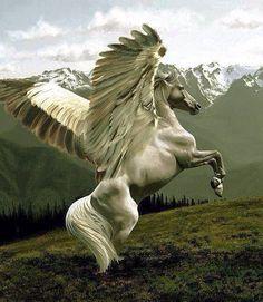 Pegasus