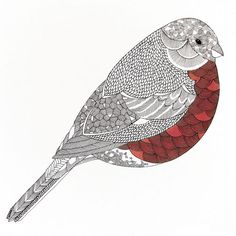 bird - pattern - design - illustration