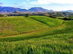 Pollino National Park (photo credit to Christian Mastrolorenzo)
