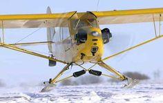 Piper Cub on Skiis