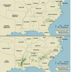 S Causes Effects Of Antebellum Immigration - Us cotton production map