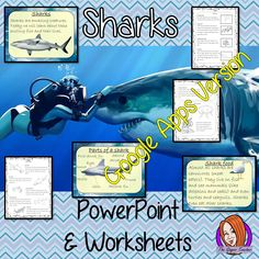 Distance Learning Sharks Google Slides Lesson Kids love sharks! This lesson teaches students about sharks. There is a fun, detailed 58 slide presentation on where sharks live, details and facts about the how they spend their time, information about how they hunt and eat, a look at the different types of sharks and a brief look at the parts of a shark. There are also differentiated, 8 page, sharks worksheets to allow children to demonstrate their understanding and assist their learning. Different Types Of Sharks, All About Me Crafts, All Sharks, Role Play Areas, A Classroom, Teaching Resources, Distance, Worksheets, Presentation