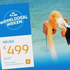 #werelddealweken #klm #aruba #bonaire #curacao #suriname #Paramaribo #vakantiewoning  www.casacama.com