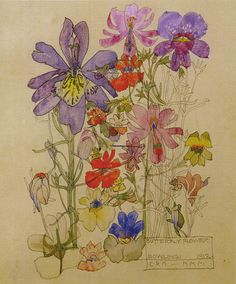 Butterfly Flower Bowling - Charles Rennie Mackintosh – Oil Painting Reproductions and Prints Charles Rennie Mackintosh, Art And Illustration, Botanical Illustration, Illustrations, Art Floral, Botanical Drawings, Botanical Prints, Butterfly Flowers, Flower Art