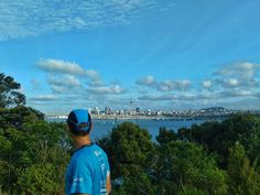 Discovering little gems.  - Birkenhead Auckland New Zealand  - HTC Desire Eye  - Snapseed
