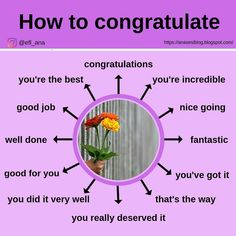 Well done! Useful expressions in order to congratulate ✨✨✨🧩🧩 . English Learning Spoken, Teaching English Grammar, English Writing Skills, English Language Learning, English Lessons, English Verbs, English Sentences, English Phrases, Learn English Words