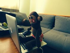 Monkeys dub it better