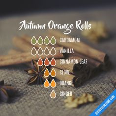 The ultimate essential oil blend software! Create your aromatherapy blends or search through our extensive list. Easily find what blends you can make based on the oils you have. Essential Oils Online, Doterra Essential Oils, Doterra Blends, Yl Oils, Ginger Essential Oil, Essential Oil Uses, Chai, Essential Oil Diffuser Blends, Aromatherapy Diffuser