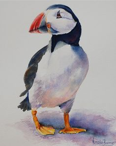 Puffin Bird Painting Animal Art PRINT 8x10 Home by NicoleBarrosArt, $14.00