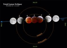 lunar eclipse diagram - This diagram shows the progression of the total lunar eclipse on December 20th and December 21st, 2010. Each number corresponds with the beginning of a specific stage in the eclipse. 1) Partial eclipse begins 2) Total eclipse begins 3) Mid-eclipse 4) Total eclipse ends 5) Partial eclipse ends.  Moon images courtesy of Nathan S. Barrow. (Diagram created by Shelley Witte)