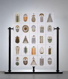 The Biologically-Inspired Glass Work of Danish Artist Steffan Dam