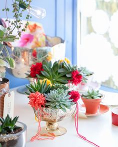 In the shop: a winter window and request for your vote on periwinkleflowers.blogspot.com