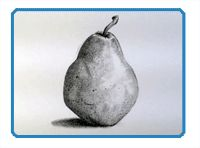 Graphite or Pencil Drawing Tutorials - Repin this!
