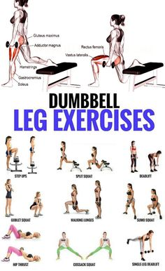 Top 5 Dumbbell Exercises for A Leg-Destroying Workout . - Top 5 Dumbbell Exercises for A Leg-Destroying Workout - Dumbbell Leg Workout, Body Weight Leg Workout, Leg Workout Women, Gym Workouts Women, Best Leg Workout, Hamstring Workout, Weight Lifting Workouts, Weights Workout For Women, Workout Exercises
