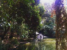 @jardinbotanicob un lugar para conectarse con la maturaleza en medio de la ciudad #AmoElJardinBotanicoDeBogota . Y es aun mas rico con personas que quieres @michellemanterola