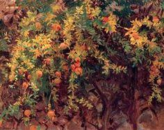 """Pomegranate Tree"", 1908 ~ John Singer Sargent"