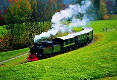 Wälderbähnle Incentive Vorarlberg (c) Felder, Bregenzerwald Tourismus Lets Move, Felder, Austria, Train, Kids, Time Travel, Tourism, Culture, Young Children