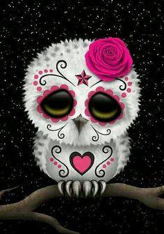 Skull Owl!!   *LadySkull*