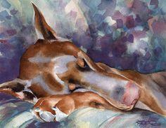 RED DOBERMAN SLEEPING Dog Watercolor Art Print by k9artgallery, $12.50