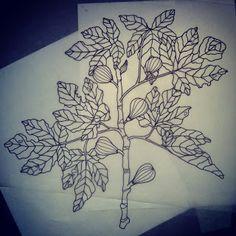 Fig Tree Tattoo