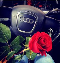 …I'm not an Audi girl, but I love love love this. I'll always drive and Audi!