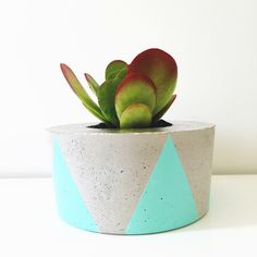 Image of Planter - spearmint TRI