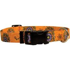 Yellow Dog Collar, Extra Small, 8 inch, 12 inch, Multicolor