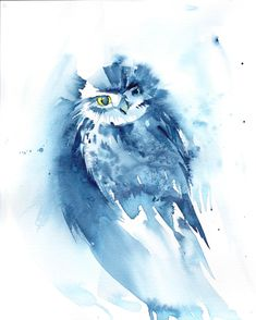 Owl painting, Owl in watercolour, Original Watercolour Bird painting, Owl Art, Blue Art Watercolour by Anjana Cawdell Owl Watercolor, Bird Artwork, Owl Art, Blue Art, Photo Reference, Lovers Art, Impressionist, Pet Birds, Original Paintings