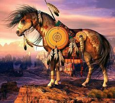 Ceremonial War Horse!